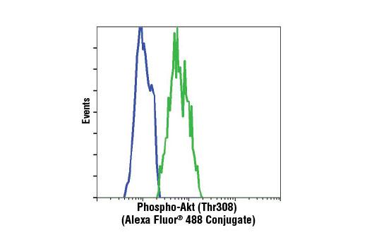 Flow cytometric analysis of NIH/3T3 cells, untreated (blue) or PDGF-treated (green) using Phospho-Akt (Thr308) (C31E5E) Rabbit mAb (Alexa Fluor® 488 Conjugate).