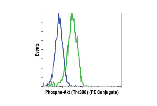 Flow cytometric analysis of NIH/3T3 cells, treated with Human Platelet-Derived Growth Factor BB (hPDGF-BB) #8912 (green) or treated with LY294002 #9901, Wortmannin #9951, and U0126 #9903 (blue), using Phospho-Akt (Thr308) (C31E5E) Rabbit mAb (PE Conjugate).