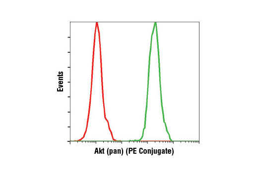 Flow cytometric analysis of Jurkat cells using Akt (pan) (C67E7) Rabbit mAb (PE Conjugate) (green) compared to concentration-matched Rabbit (DA1E) mAb IgG XP® Isotype Control (PE Conjugate) #5742 (red).