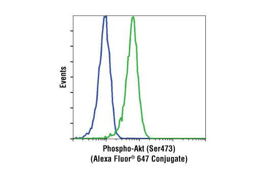 Flow cytometric analysis of Jurkat cells, untreated (green) or treated with LY294002 #9901, wortmannin #9951 and U0126 #9903 (blue), using Phospho-Akt (Ser473) (D9E) XP ® Rabbit mAb (Alexa Fluor ® 647 Conjugate).