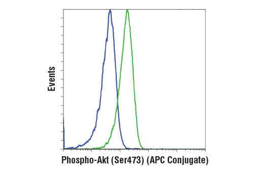 Flow cytometric analysis of Jurkat cells, untreated (green) or treated with LY294002 #9901, Wortmannin #9951, and U0126 #9903 (blue), using Phospho-Akt (Ser473) (D9E) XP ® Rabbit mAb (APC Conjugate).