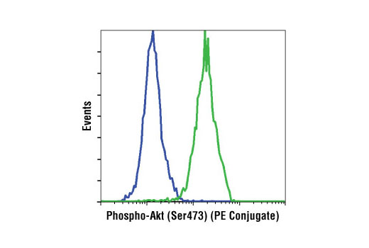 Flow cytometric analysis of Jurkat cells, untreated (green) or treated with LY294002 (PI3 Kinase Inhibitor) #9901, Wortmannin (PI3 Kinase Inhibitor) #9551 and U0126 (MEK1/2 Inhibitor) #9903 (blue), using Phospho-Akt (Ser473) (D9E) XP ® Rabbit mAb (PE Conjugate).