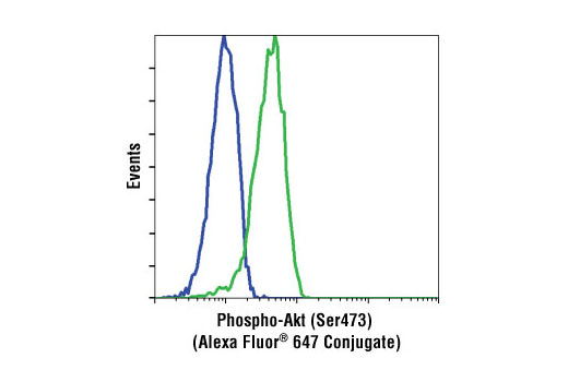Flow cytometric analysis of Jurkat cells, untreated (green) or LY294002 and wortmannin treated (blue), using Phospho-Akt (Ser473) (193H12) Rabbit mAb (Alexa Fluor ® 647 Conjugate).