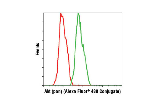 Flow cytometric analysis of Jurkat cells using Akt (pan) (C67E7) Rabbit mAb (Alexa Fluor ® 488 Conjugate) (green) compared to Rabbit (DA1E) mAb IgG XP ® Isotype Control (Alexa Fluor ® 488 Conjugate) #2975 (red).