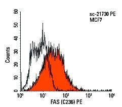 FAS (C236) PE: sc-21730 PE. FCM analysis of MCF7 cells. Black line histogram represents the isotype control, normal mouse IgG<sub>1</sub>: sc-2866.