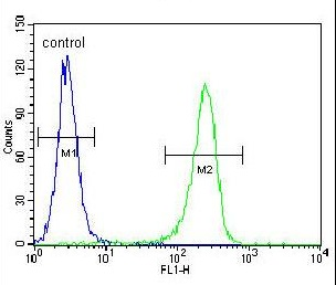 Flow Cytometric analysis of HeLa cells with ab170216 antibody at a dilution of 1/10 (right histogram) compared to a negative control cell (left histogram).