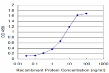Detection limit for recombinant GST tagged ALOX12 is approximately 0.3 ng/ml as a capture antibody.
