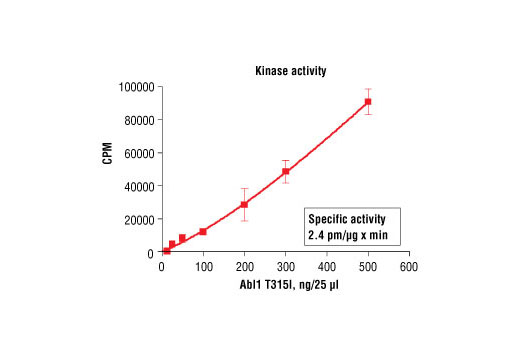 Figure 1. Abl1 T315I kinase activity was measured in a radiometric assay using the following reaction conditions: 60 mM HEPES-NaOH, pH 7.5, 5 mM MgCl2, 5 mM MnCl2, 3 µM Na-orthovanadate, 1.2 mM DTT, 100 µM ATP, 100 µM Signal Transduction Protein (Tyr160) Biotinylated Peptide #1366 and variable amount of recombinant Abl1 T315I. Reaction mixture incubated at room temperature for 10 minutes.