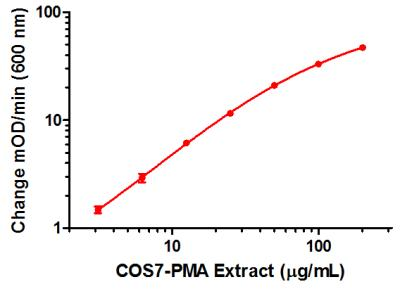 Example positive control sample standard curve. A dilution series of extract in Incubation Buffer in the working range of the assay. The extract was prepared from COS7 cells serum-starved overnight and then treated with 200 nM Phorbol 12-myristate 13-acetate (PMA) for one hour.
