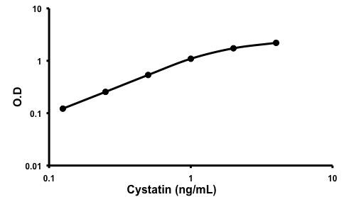 Representative standard curve using Cystatin Monkey ELISA kit (ab190542)